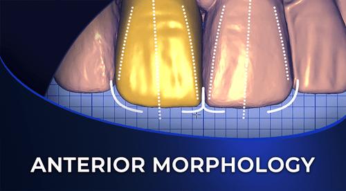 anterior morphology CADCAM online dental course